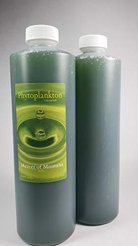 Live Marine Phytoplankton, Tetraselmis, (x2) 16oz. Bottles