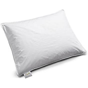 Amazon Com Fairmont Hotels Luxury Feather Amp Down Pillows