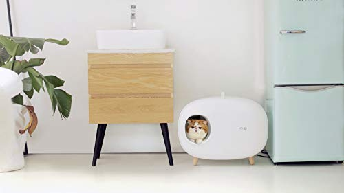 Cat litter box for easier handling of litter
