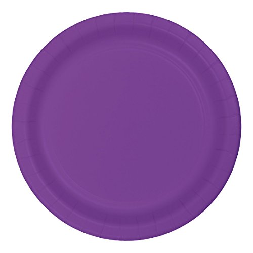 Creative-Converting-Touch-of-Color-24-Count-1025-Banquet-Plate