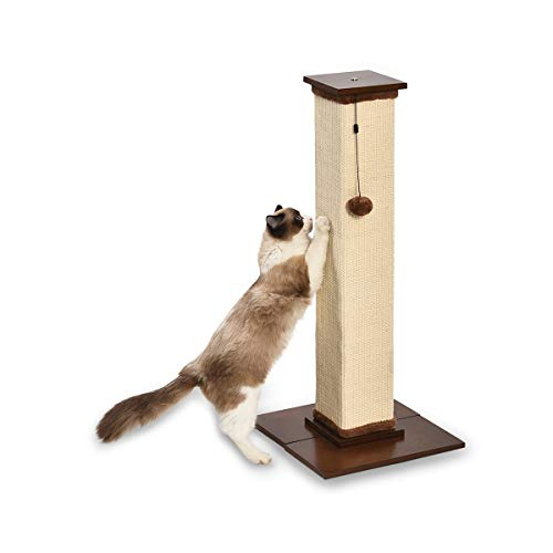 AmazonBasics Large Premium Tall Cat Scratching Post - 16 x 35 x 16 Inches, Wood