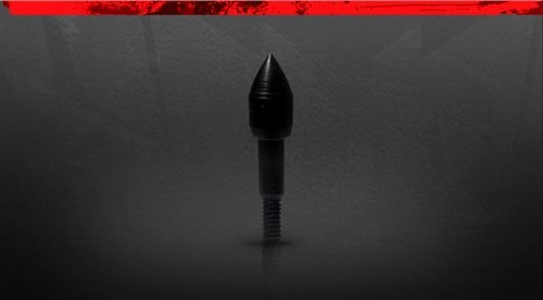 100 Magnum Grain (Black Eagle Executioner/Zombie Slayer Crossbow Bolt Screw In Point - Black - 12 Pack (Bullet Point, 100 Grain))