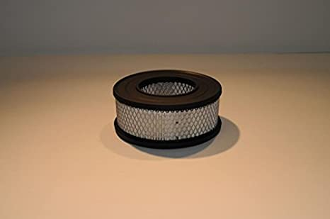 AIR Filter Qty 2 AFE 01660264 Joy Direct Replacement