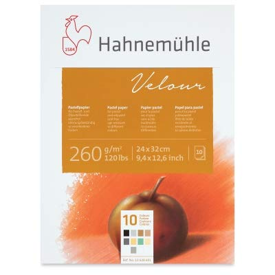 Hahnemuhle Pastel 10 Color Velour Pad 9.25x12.5 Inches 260gsm 10 Sheets by Hahnemuhle