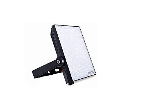 PhilipsLighting Metal 10W Smart Bright Waterproof LED Flood Light (White)
