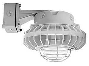 RAB Lighting HAZBLED26C-G HAZLED 26W Cool LED Wall Bracket with Clear Globe and Wire Guard, 5100 K, Gray by RAB Lighting