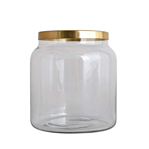 Creative Co-op DA8132-1 Glass Vase with Brass Frog Lid ()