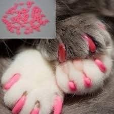 INP Distribution Funda de Uñas Anti Arañazos para Gato Mascota Talla M (Azul): Amazon.es: Hogar