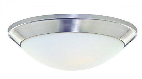 Dolan Lighting Satin Designs Flush Mount - Dolan Designs 5402-09 Rainier 2 Light Flush mount, Satin Nickel