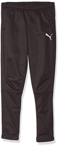 PUMA Men's LIGA Training Pants JR, Asphalt White, L ()