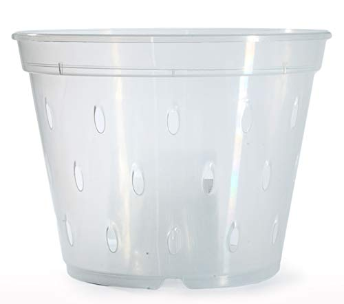 (DAN Market 5.5 inch Orchid Breathable Slotted Clear Plastic Pot - 4 Pack)