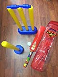 Cricket Set for Kids with Bat _Ball_Wickets _Carrying Bag Indoor Outdoor Garden Play