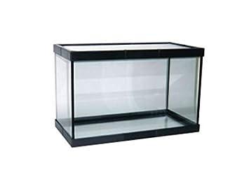 Acuario PECERA DE Cristal para Peces 38 litros: Amazon.es: Productos para mascotas
