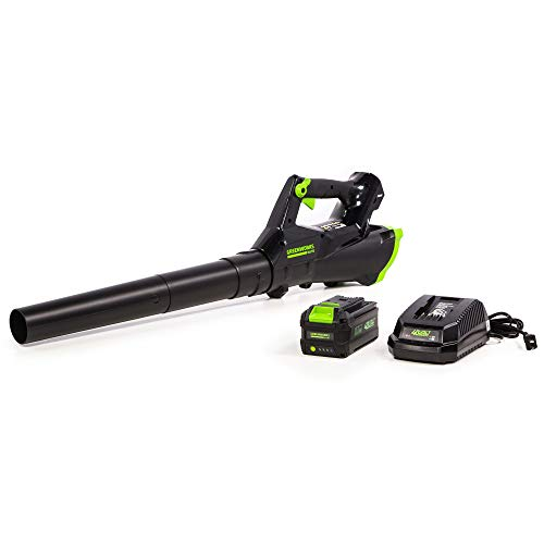 (Greenworks 40V 110MPH Cordless Axial Blower, 3AH Battery and Charger Included LB-390)
