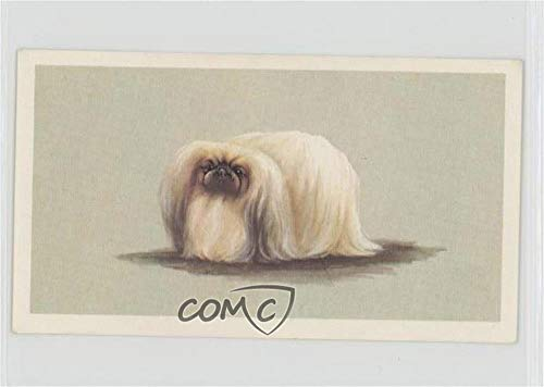 The Pekingese Ungraded COMC Good to VG-EX (Trading Card) 1979 Player's Grandee Top Dogs Collection - Tobacco [Base] #9