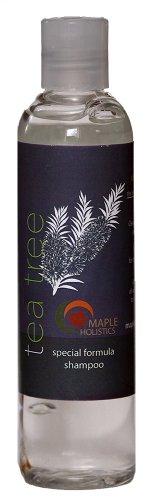 Tea Tree shampooing pour les pellicules modérée d'argan, jojoba et organique lavande 100% naturel traitements gratuits, Sulfate pour hommes et femmes - Formule antiseptique élimine les cellules mortes de la peau et limite l'excrétion - Sans danger pour le
