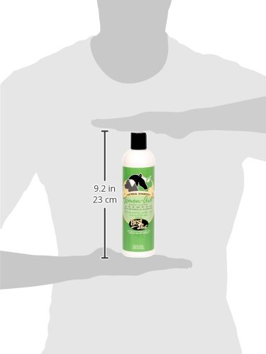 Buy shot shampoo dogs