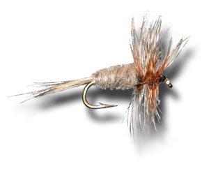 Midge dry Adamsフライ釣りフライ Size 22 22 - dry 6 Size Pack B00KD8GZH6, 西山町:3ba9dd3e --- sharoshka.org