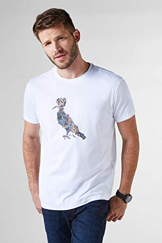 Camiseta Pica-pau Selos