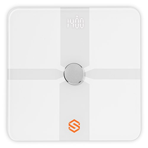 STYR Labs Wireless Bluetooth Weight Body Fat Smart Scale and Protein Starter Kit – Free Fitness App (IOS and Android) by STYR Labs