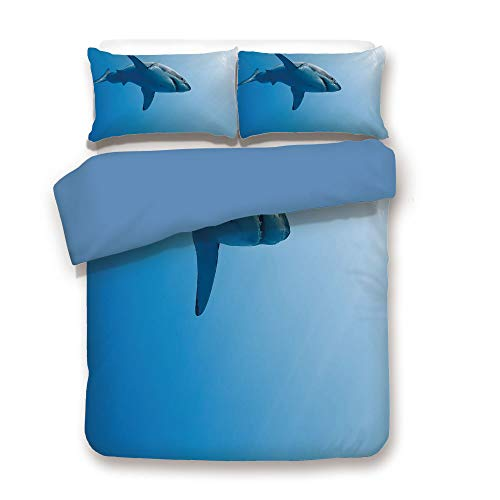 Back,Shark,Fish Swimming in The Ocean Underwater Beauty Tropical Island Water Nature Landscape,Light Blue,Decorative 3 Pcs Bedding Set by 2 Pillow Shams,Full Size ()