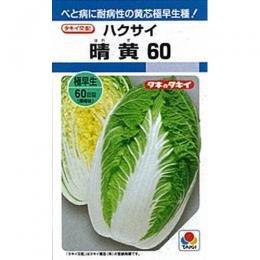 白菜 種 晴黄60 L5千粒 B00NHDDHFW