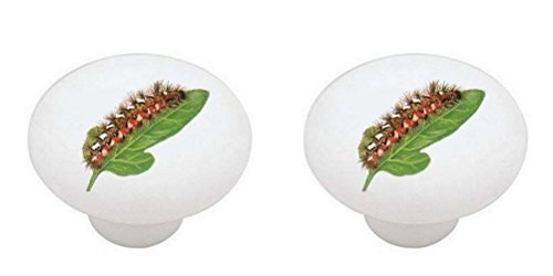 SET OF 2 KNOBS - Caterpillar #002 - Bugs Insects - DECORATIVE Glossy CERAMIC Cabinet PULLS Dresser Drawer (Caterpillar Drawer Pull)