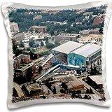 Sandy Mertens State of Georgia - Summer Olympics Georgia Tech Aquatic Center 1996 - 16x16 inch Pillow - Pillowcase Georgia Tech