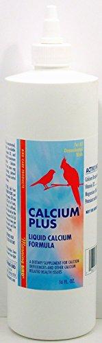Morning Bird Calcium Plus Liquid (16 Fl Ounce)