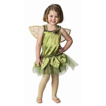 Garden Fairy Costume - 6/8
