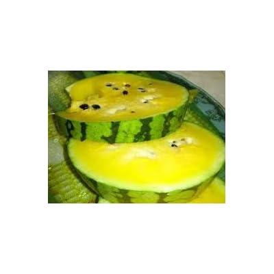 HeirloomSupplySuccess 10 Heirloom Early Moonbeam Watermelon Seeds : Garden & Outdoor