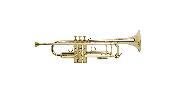 Bachmann 180 mlvg Stratocaster Stradivarius en B: Amazon.es: Instrumentos musicales