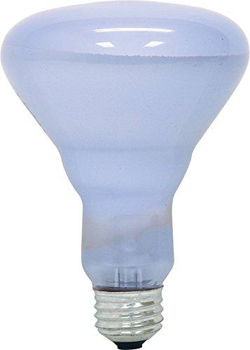 GE Lighting 48692 Reveal Floodlight