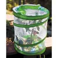 Discovery Exclusive Butterfly Canopy