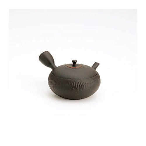 TOKYO MATCHA SELECTION - Tokoname kyusu - HOKURYU (260cc/ml) ceramic mesh - Japanese teapot [Standard ship by Int'l e-packet: with Tracking & Insurance]