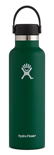 Hydro Flask 18 oz Double Wall Vacuum Insulated Stainless Steel Leak Proof Sports Water Bottle, Standard Mouth with BPA Free Flex Cap, Sage