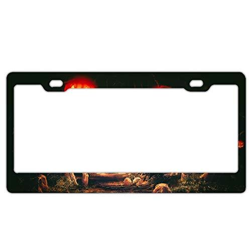 KSLIDS Halloween Terror Night License Plate Covers Chrome License Plate Frame Tag Holder 2 Holes -