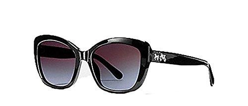 Coach Horse and Carriage Black Square Sunglasses - - Coach Sunglasses Case