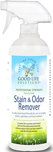 Stain Remover and Odor Eliminator - The Best ECO-FRIENDLY Professional Strength Toddler, Dog and Cat Urine Cleaner - A Safer Plant-Based Enzyme Formula for Carpet Fabric Upholstery & Hard Floors. 24oz (Stain Removal Tough Carpet)
