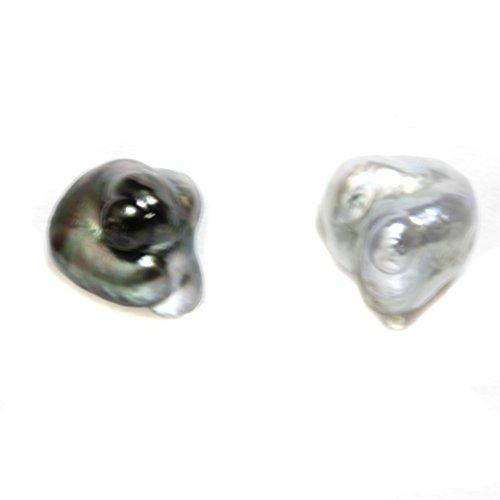 14k Gold - Tahitian Keshi Baroque Pearl Stud Earrings 10.5 MM Black and Silver AAA Flawless Gold Keshi Pearls