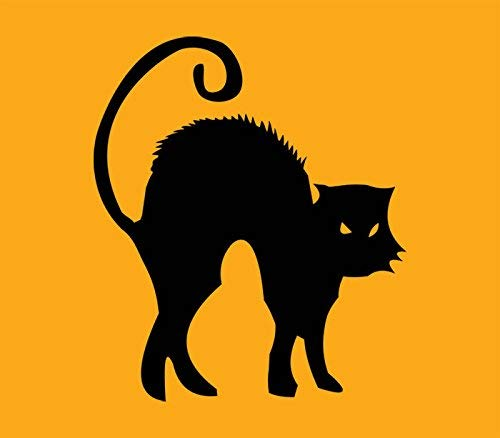 Funlaugh Sayings Wall Decal Halloween Cat Decor Sticker Party Decor Black Cat Art 17 inch x 20 inch Vinyl Removable Mural Wall Sticker