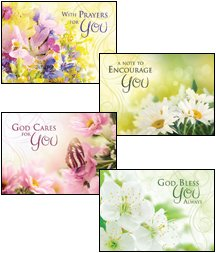 Amazon fragrant expressions niv scripture greeting cards fragrant expressions niv scripture greeting cards boxed encouragement m4hsunfo