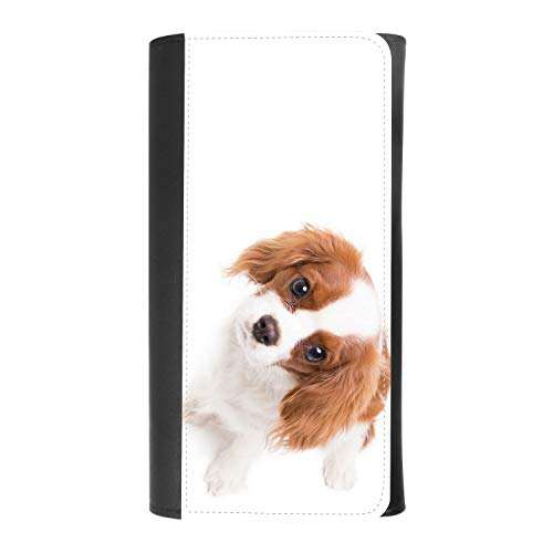 (cavalier king charles spaniel dog) women