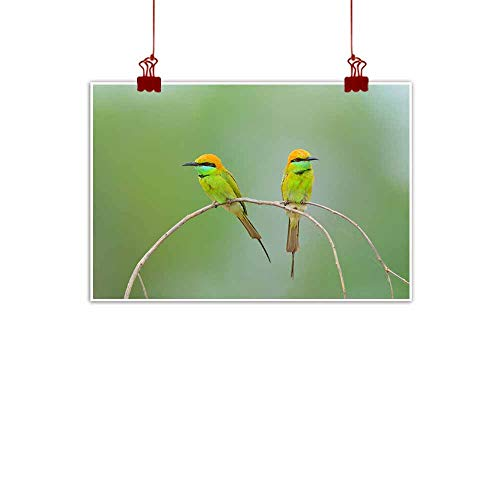 duommhome Simulation Oil Painting Bird (Green Bee-Eater) Thailand for Living Room Bedroom Hallway Office 32