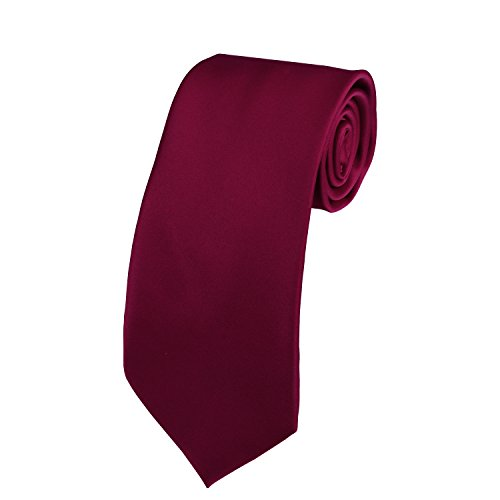 Gift Necktie (Solid Color Satin Ties Mens Neckties with Gift Box by Doninex (Burgundy))