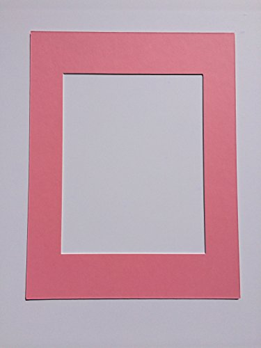 16x20 Bubble Gum Pink Picture Mat Cut for a 11x14 -