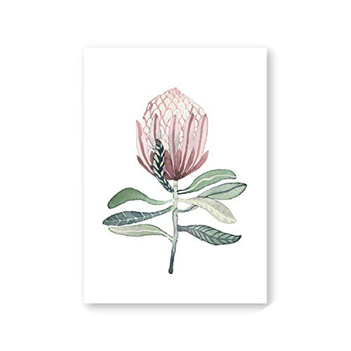 sensitives Watercolor Protea Flowers Nordic Posters for sale  Delivered anywhere in USA
