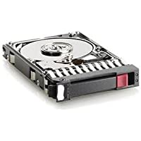 HP Dual Port Enterprise - hard drive - 300 GB - SAS-2 (507127-S21) -