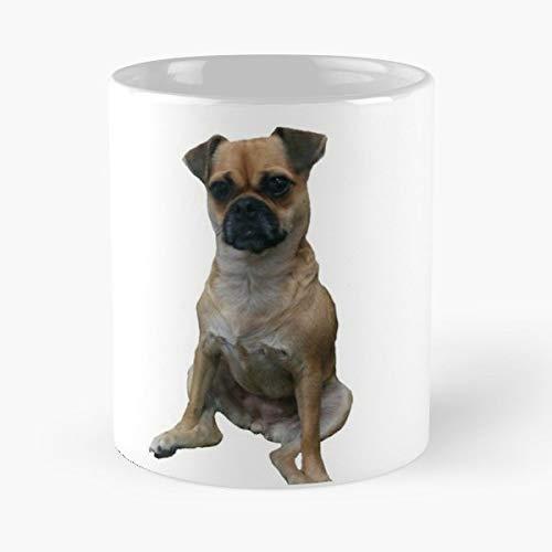 Dog Pug Pugs Rescue Morning Coffee Mug Ceramic Novelty - Doug Mix Pets