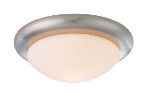 Monte Carlo MC18BS-B Matte Opal Disc Glass Ceiling Fan Light Kit, Brushed Steel Finish (Disk Opal Matte)
